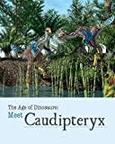 Meet Caudipteryx (Age of Dinosaurs)