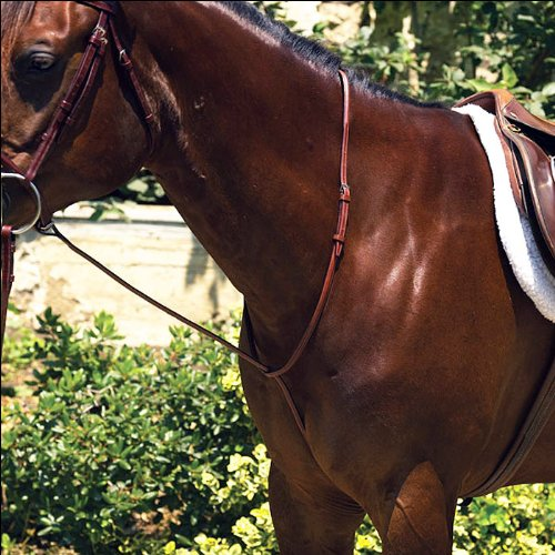 Perris Professional Raised Standing Martingale - Size:Pony Color:Chestnut ()