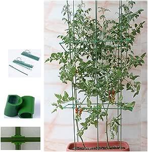 SOULOS - Soporte de plástico para macetas de Plantas trepadoras ...