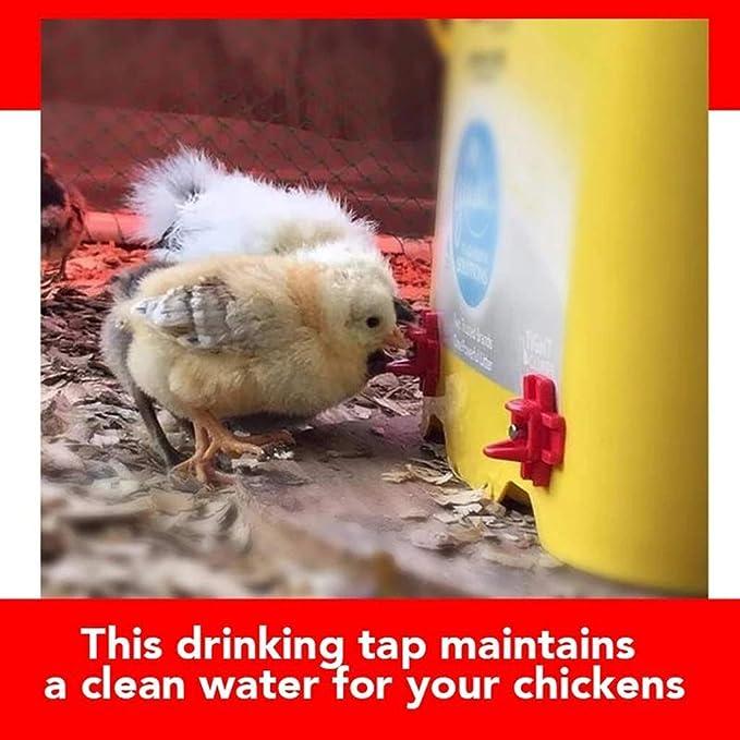 10pcs abreuvoir de volaille syst/ème dabreuvoir automatique de abreuvoir de poulet adapt/é au poulet caille pigeon perchoir colombe ACELEY Boire automatique de la volaille