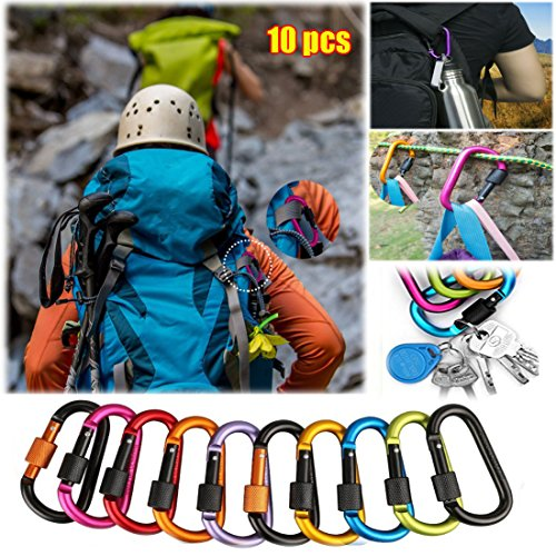 10 Pack Carabiner Clip, Aluminum Screw D Ring Locking Carabiner Keychain, D Shape Buckle Pack, Keychain Clip, Spring Snap Key Chain Clip Hook Screw Gate Buckle for Camping, Hiking, Fishing and Outdoor