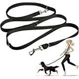 Dog Leash Multifunctional Dog Training Leads 8ft Double Leash for Puppy