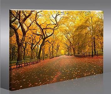 Central Park 1p Quadri moderni intelaiati - pronti da appendere ...