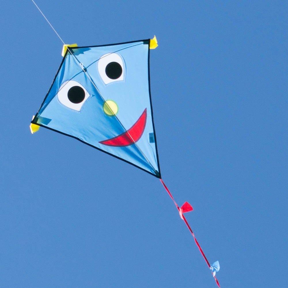 CIM Kinderdrachen - Happy Eddy Blue - Einleiner für Kinder ab 3 Jahren - Abmessung: 67x70cm - inkl. 80m Drachenschnur und Schleifenschwanz Colours in Motion