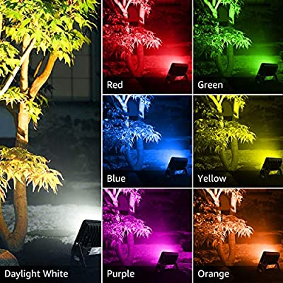 LE LED Flood Lights Outdoor, RGB Floodlight, 15W Stage Lighting, Waterproof, Plug in Security Light with Remote Control, for Home, Backyard, Patio, Garage, Tree, Pack of 2