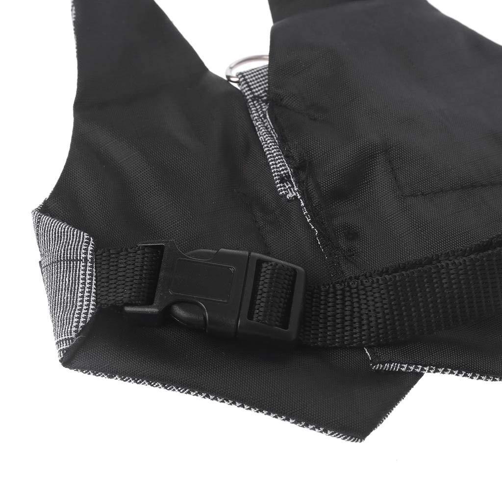 Chinchillas Guinea Pig Vest Clothes Biniwa Rabbit Harness Multipurpose Small Pet Leash