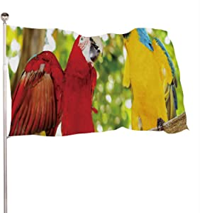 Dxichy Two Beautiful Carribean maccaws on Exotic Beach at Saona Island,Banner Flags with Grommets for Decor Vivid Color and UV Fade Resistant Do can Republic 3x5 Ft