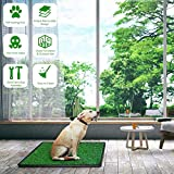 DELMANGO Indoor Dog Potty Grass Pad - Puppy Potty