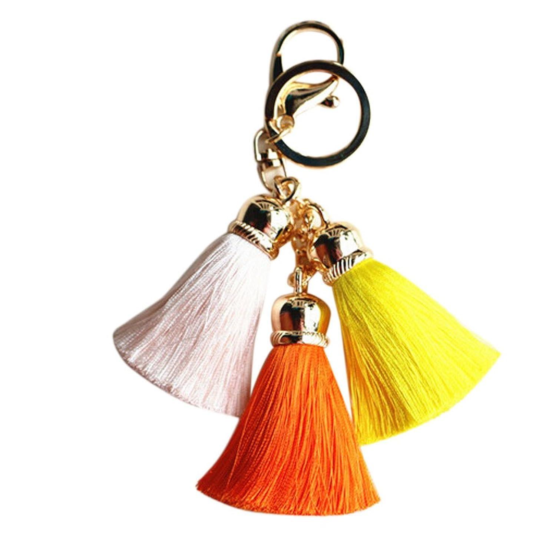 Best Deal New Fashion Cute Ice Silk Colourful Tassel Car Keychain Handbag Key Ring Gift 1Pc^Orange