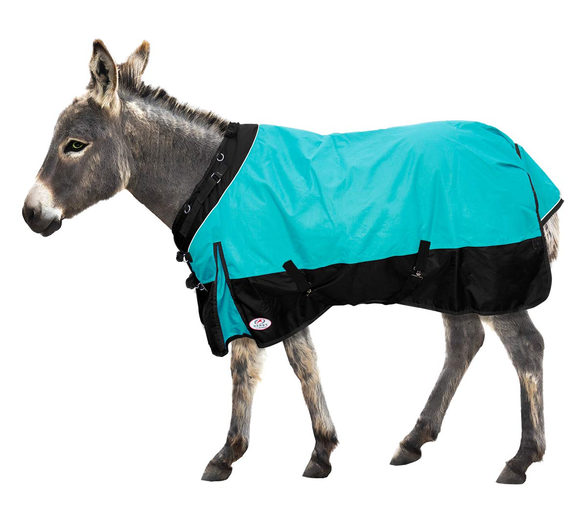 Derby Originals Windstorm Series Premium Mini Horse and Pony Winter Turnout Blanket with 1200D Ripstop Waterproof Nylon Exterior - Heavy Weight 300g Polyfil Insulation