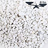 8-lbs Mini White Synthetic River Pebbles, Decorative Accent Stones Vase Fillers, 0.25 to 1-Inch Stones