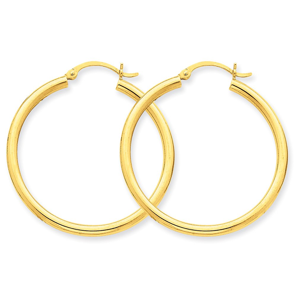 14k Yellow Gold Polished 2.5mm Round Hoop Earrings T934 by Lex and Lu