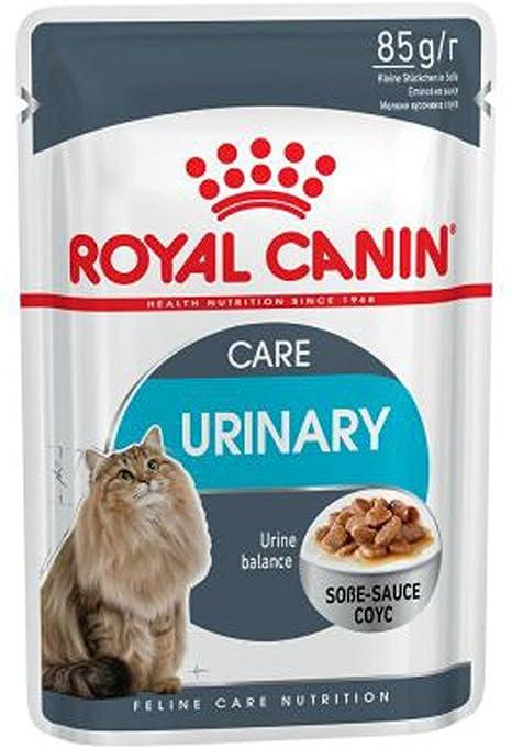 Royal Canin Feline Urinary Care in Sosse - Comida para gatos (12 x 85 g): Amazon.es: Productos para mascotas