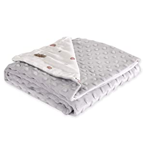 SYIDOOLE Baby Blanket, Receiving Blanket Super Soft Plush with Dotted Backing, Minky Swaddle Blanket for Nursery Crib, Stroller, Toddler Bed, Carseat, Grey Hedgehog Printed,30
