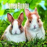 Honey Bunny 2017 Mini 7x7
