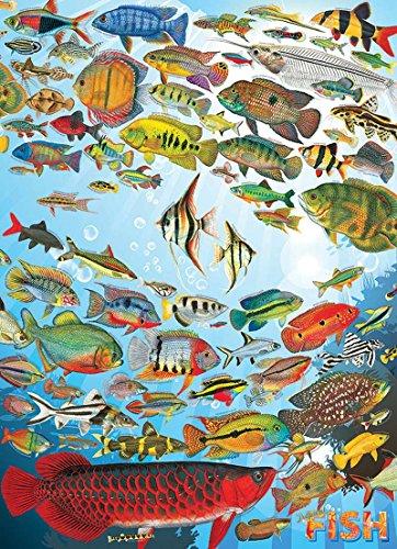 (Cobble Hill Tropical Fish Jigsaw Puzzle (1000 Piece))