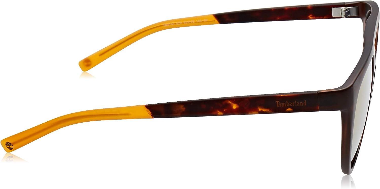 Timberland Herren TB9163 Sonnenbrille, Braun (Dark Havana