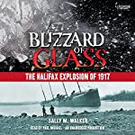 Blizzard of Glass: The Halifax Explosion of 1917 | Sally M. Walker