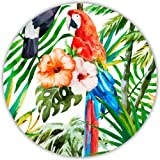 Coastero Absorbent Stone Drink Coasters - TROPICAL