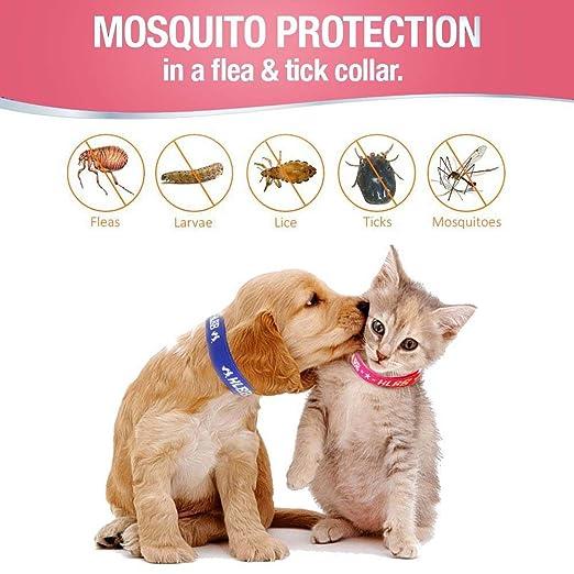 Para mascotas perros y gatos pulgas y garrapatas Collar con Esencia botánico natural para el Control del Remedio repeler pulgas huevo, Mosquitos, ...