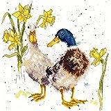 Bothy Threads Cross Stitch Kit - Ducks and Daffs XHD6 by Bothy Threads