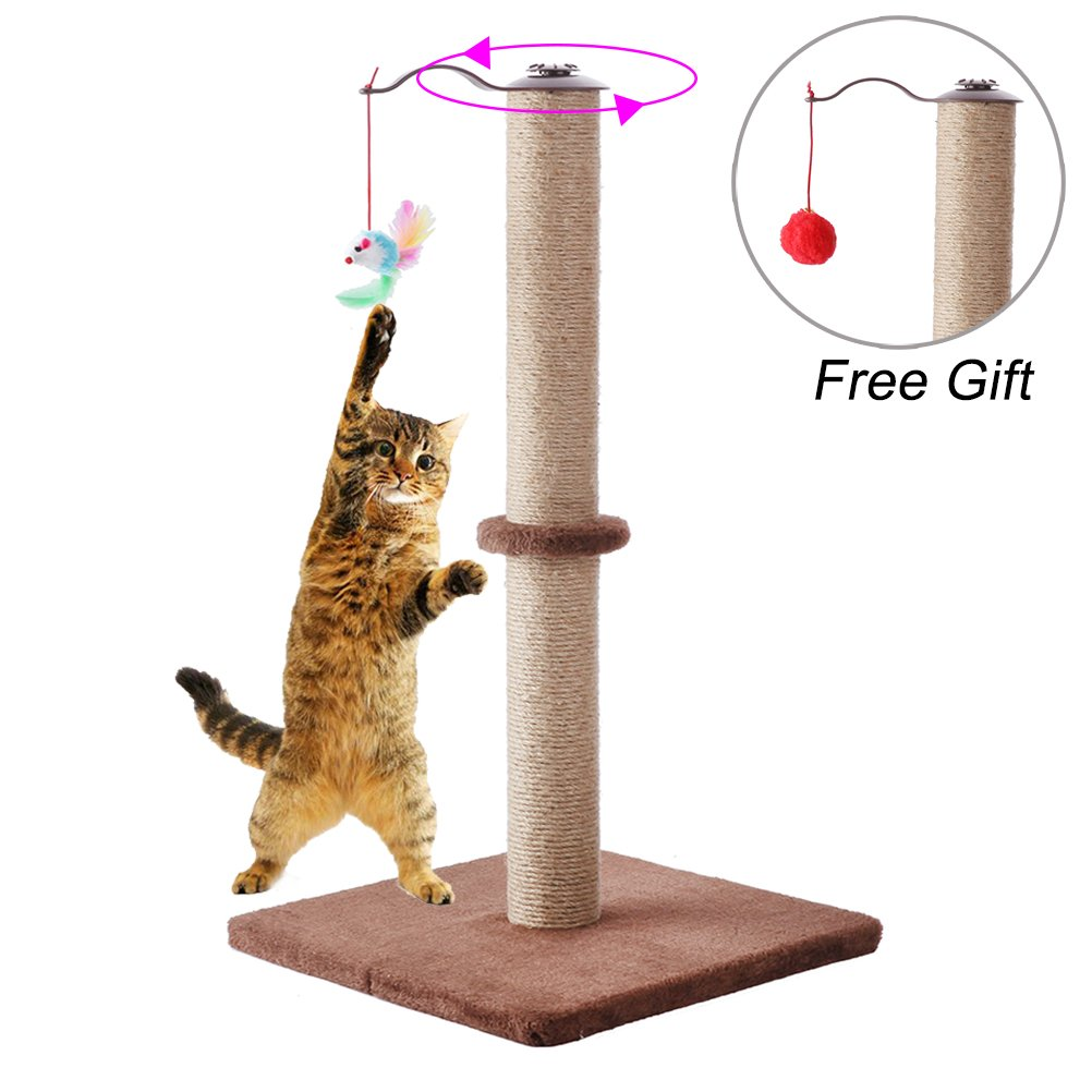BINGPET Cat Scratching Post 24'' Sisal Kitten Scratcher with Hanging Mouse Toy by