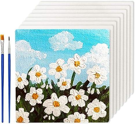 Lienzos Para Pintar 10x10 Tableros De Lienzo Blanco Para Dibujo 8pcs Con Pinceles De Pintura 2pcs Amazon Es Hogar
