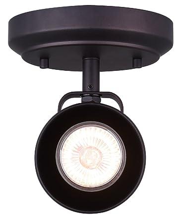 Amazon.com: Canarm Anita - Lámpara de techo y pared (1 luz ...