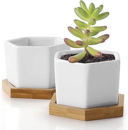 Macetas Suculentas Macetas Hexagonales De Cerámica Pequeña De 2 76 Pulgadas Para Flores O Cactus Con Agujero De Drenaje Y Bandeja De Bambú Juego De 2 Unidades Jardín Y Exteriores