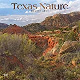 Texas Nature 2020 12 x 12 Inch Monthly Square Wall Calendar with Foil Stamped Cover, USA United States of America Southwest State Wilderness