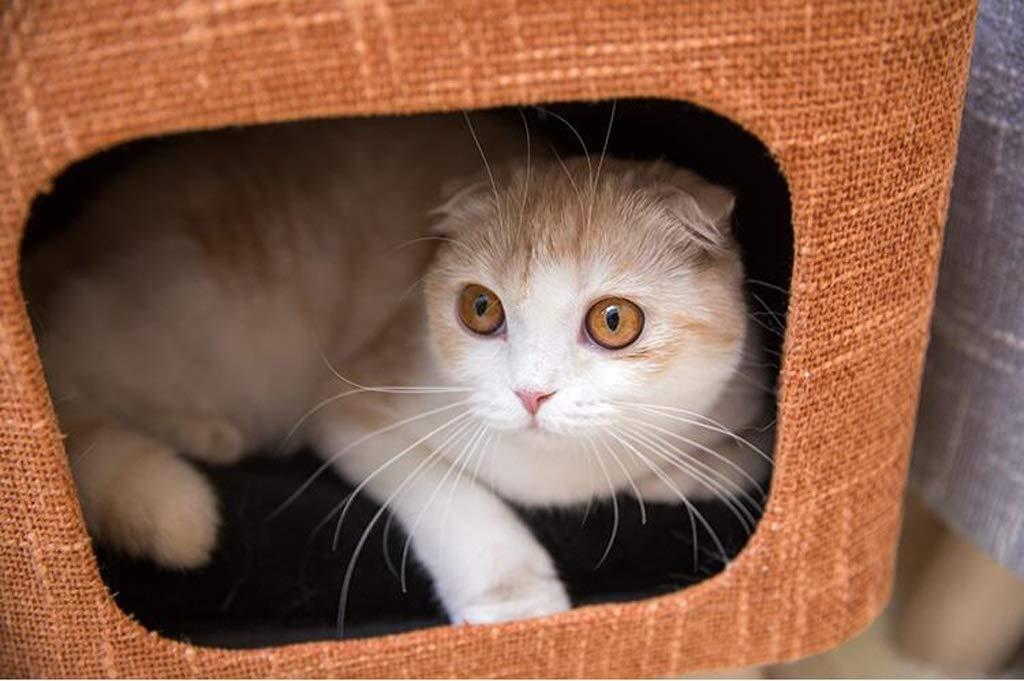 Sgabelli Per Gatti : Nwn letto per animali domestici quattro stagioni universale dog