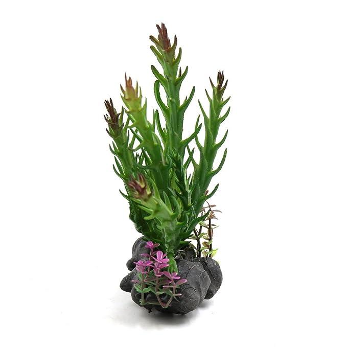 Amazon.com : eDealMax plástico terrario hojas de las plantas paisaje de la decoración Para Reptiles w Base de cerámica : Pet Supplies