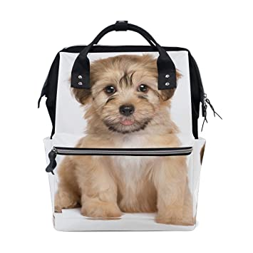 4873f5b85035 Amazon.com   ColourLife Diaper Bag Backpack Cute Havanese Puppy Dog Casual  Daypack Multi-Functional Nappy Bags   Baby
