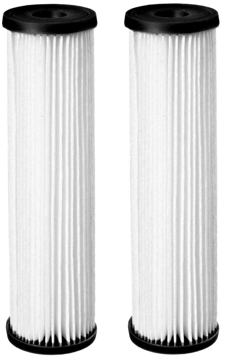Pentek S1-20BB Pleated Cellulose Filter Cartridge, 20'' x 4-1/2'', 20 Micron (Pack of 2) by Pentek