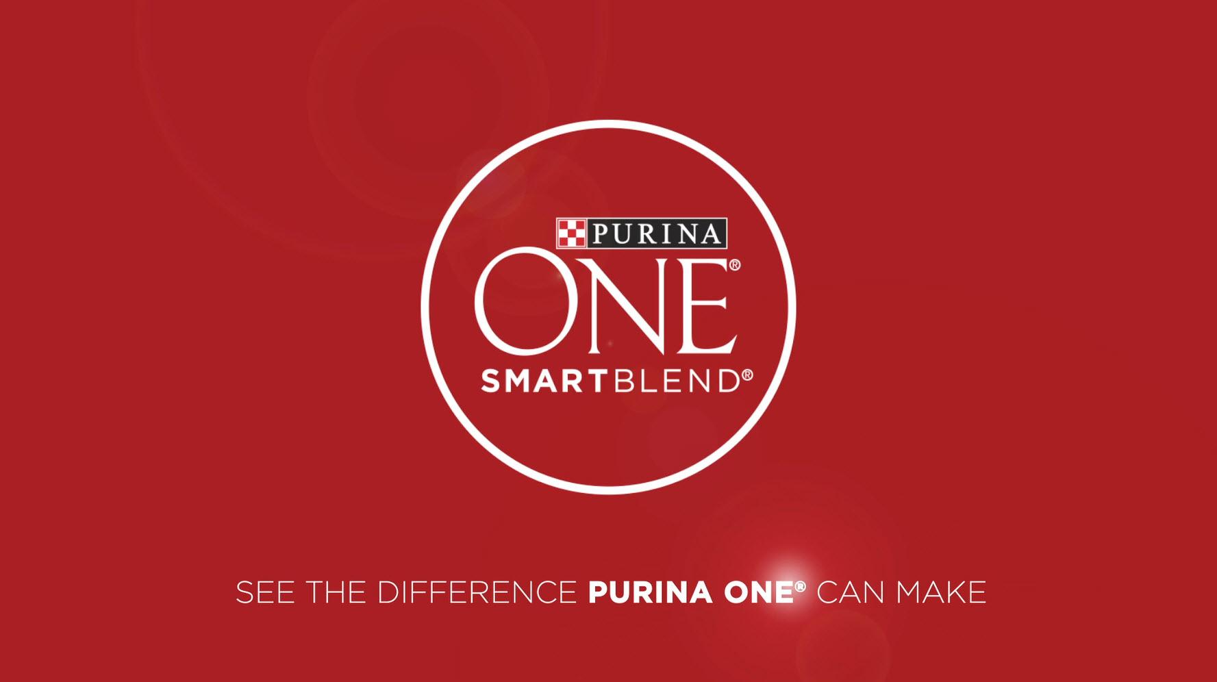 Purina ONE SmartBlend Natural Sensitive Systems, Digestive Health, Limited Ingredient Formulas Adult Dog Food