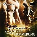 Engelsdämmerung (City of Angels 3) Hörbuch von Andrea Gunschera Gesprochen von: Juliane Ahlemeier