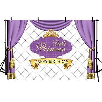 EdCott 10x8ft Pequeña Princesa Chica Fiesta cumpleaños Telón ...