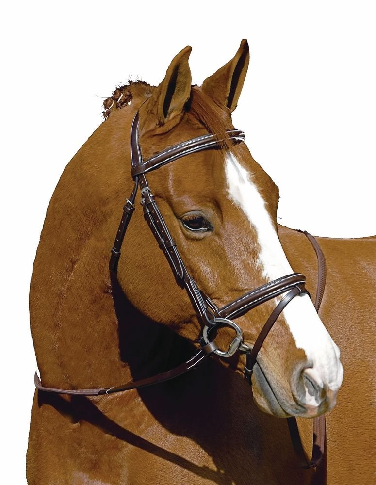 Henri De Rivel MonocrownイベントBridle Havana Cob Horse ハバナ B0091Z8VTW