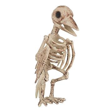 Bristol Novelty hi335 esqueleto pájaro, color marrón/beige, talla ...