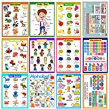 12 Laminated Educational Preschool Posters for Kindergarten classroom Organization decorations-Animals,Body Boy,Emotions,Alphabet,Fruit,Color,Shape,My House,Number,Seasons,Months,Days of the Week.