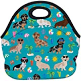 Fashion.Reborn LunchBags Beach Day Ideal Gifts - Insulated Lunch Bag Dachshund Dog Bento Lunch Bag Thermal Cooler Lunch Pouch with Portable Carrying Bag for Men & Women & Kids & Girls & Boys