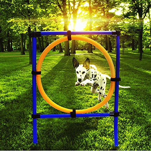 My Toots Dog Training Jump Hoop Pet Cat Outdoor Games Exercise Equipment Training Agility Obedience Equipment by My Toots