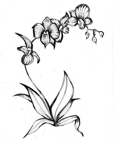 Watercoloraquarelle Lavis Noir Et Blanc Style Graphique
