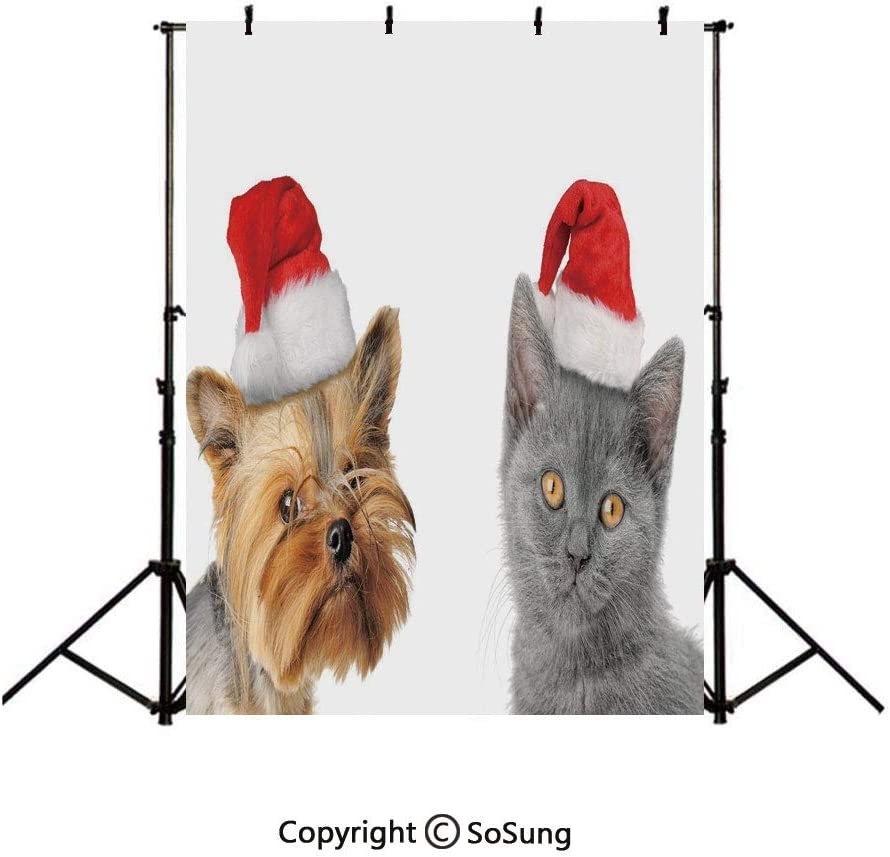 7x10 FT Cat Vinyl Photography Backdrop,Colorful Cat Figures Silhouettes and Outlines Bow Ties Sleeping Playing Happy Joyful Background for Baby Shower Bridal Wedding Studio Photography Pictures