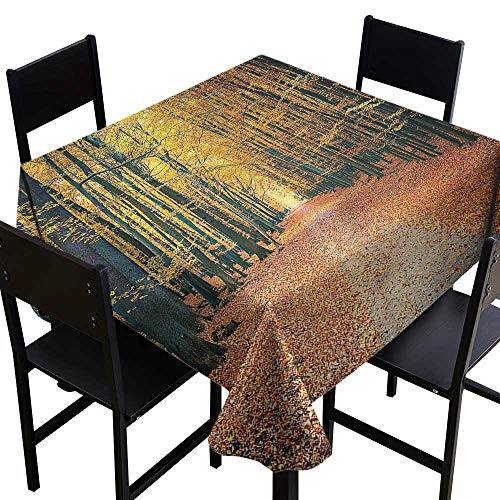Anshesix Dustproof Tablecloth Forest Romantic Alley Woods Soft and Smooth Surface W70 xL70 Indoor Outdoor Camping Picnic