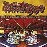 Room to Roam by WATERBOYS (2013-12-03)