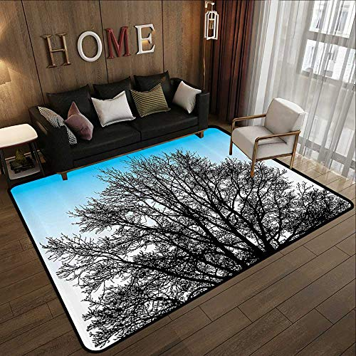 Bath Rugs,Nature,Leafless Autumn Winter Tree with Branches and Sunset Sky Landscape Image,Blue White Seal Brown 71