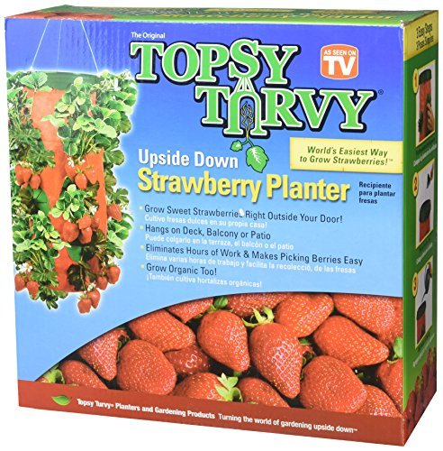 Upside Down Tomato Plant - Strawberry Round Planter