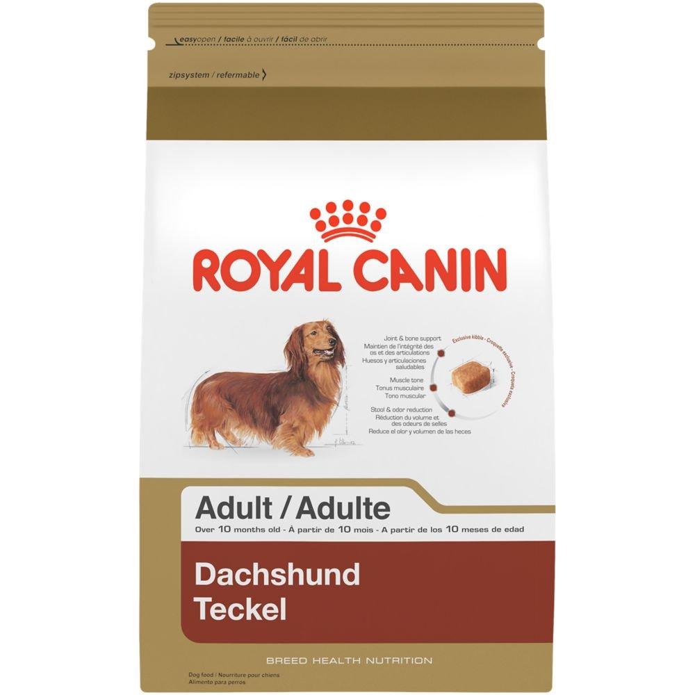 Royal Canin BREED HEALTH NUTRITION Dachshund Adult dry dog food, 10-Pound