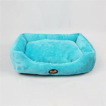 ... Algodón lanzamiento Caseta gato de casa mascotas Waterloo pequeñas y medianas perros y gatos Artículo (Azul Claro): Amazon.es: Productos para mascotas